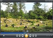 تحميل أفضل مشغل للفيديو والDVD وال4K برنامج Zoom Player للويندوز