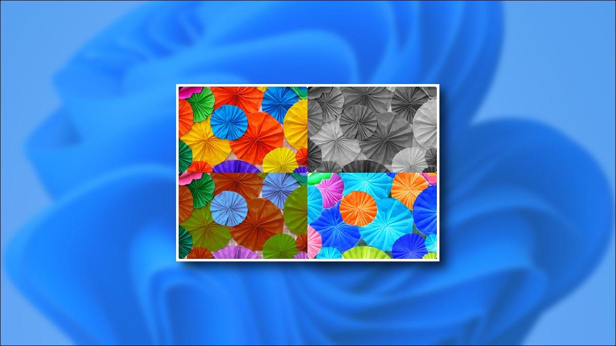 كيفية استخدام فلترات الألوان في Windows 11